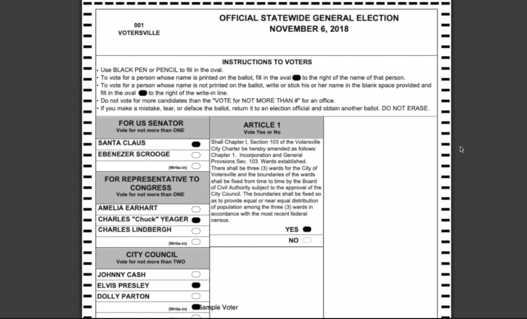 Democracy Live OmniBallot Online Remote Ballot Marking System view official ballot screen